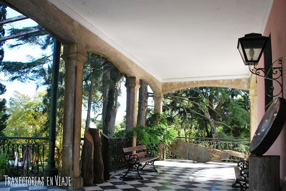 Arboretum Lussich, Uruguay.