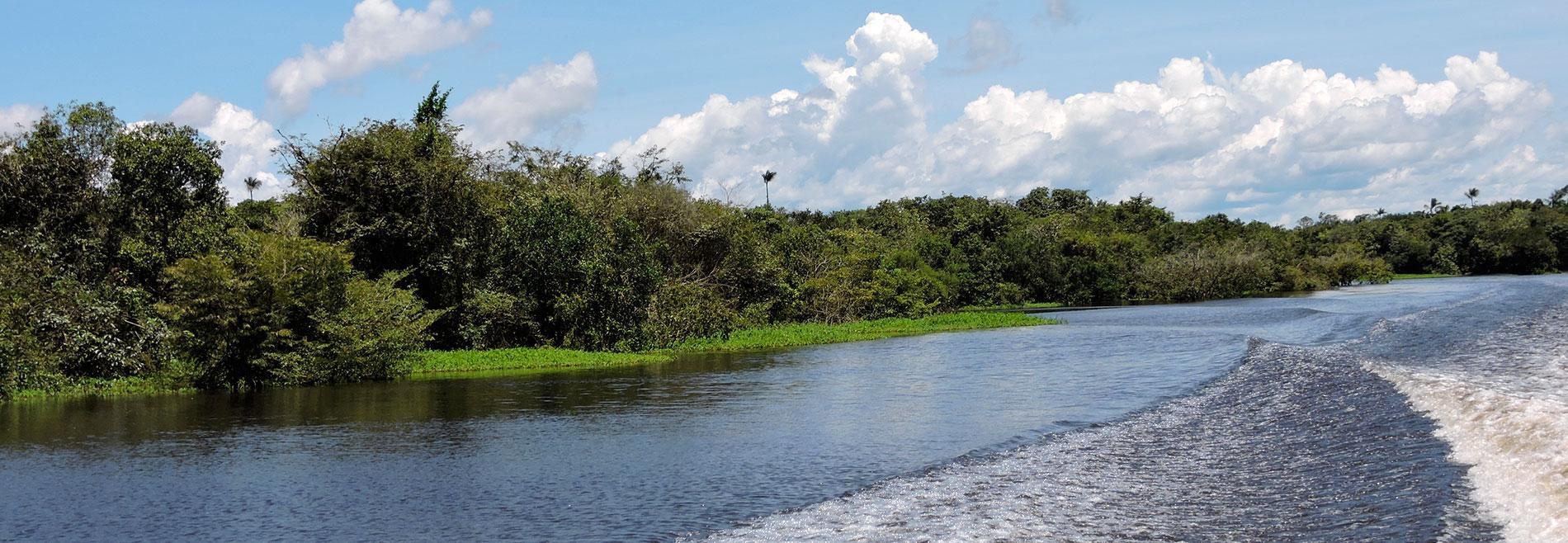 Amazonía brasileña para citadinos