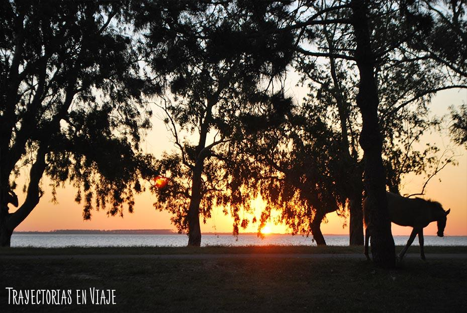 Playa Seré. Carmelo Uruguay