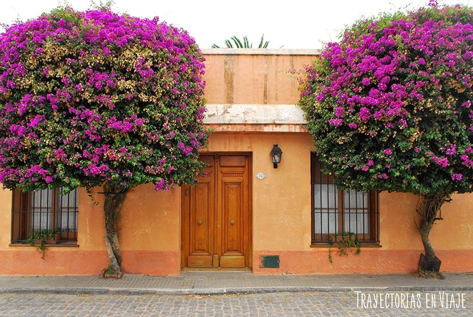 Puerta en centro histórico de Colonia Uruguay