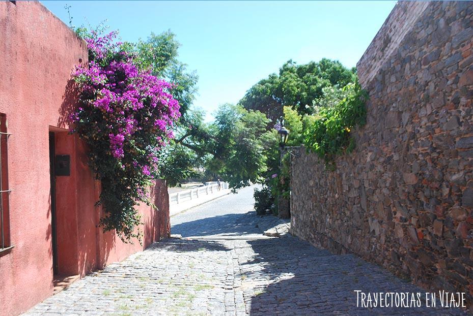 Calle al Paseo de San Gabriel. Colonia Uruguay