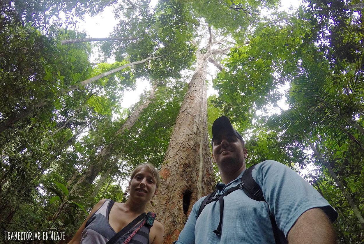 Sensación típica de la Amazonía brasileña.