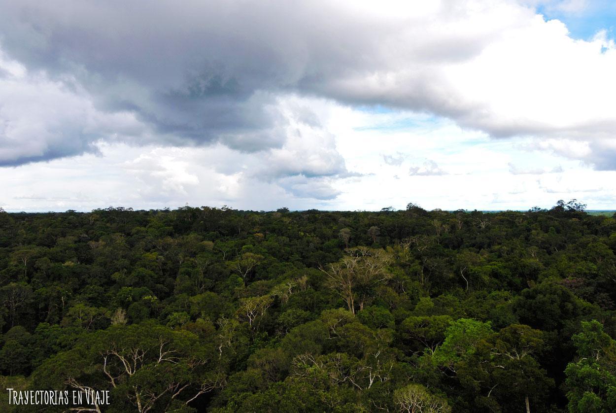 Paisaje de la Amazonía brasileña.
