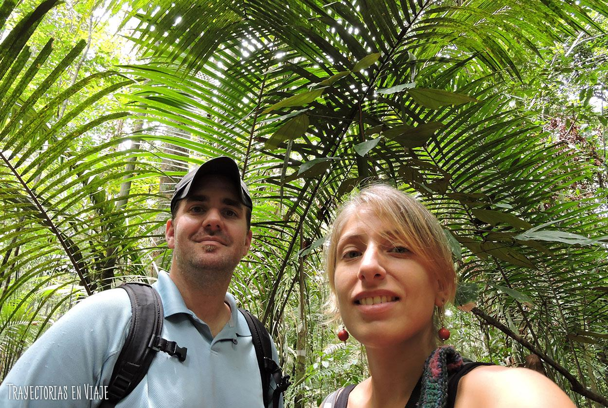 Entrada a la Amazonía brasileña