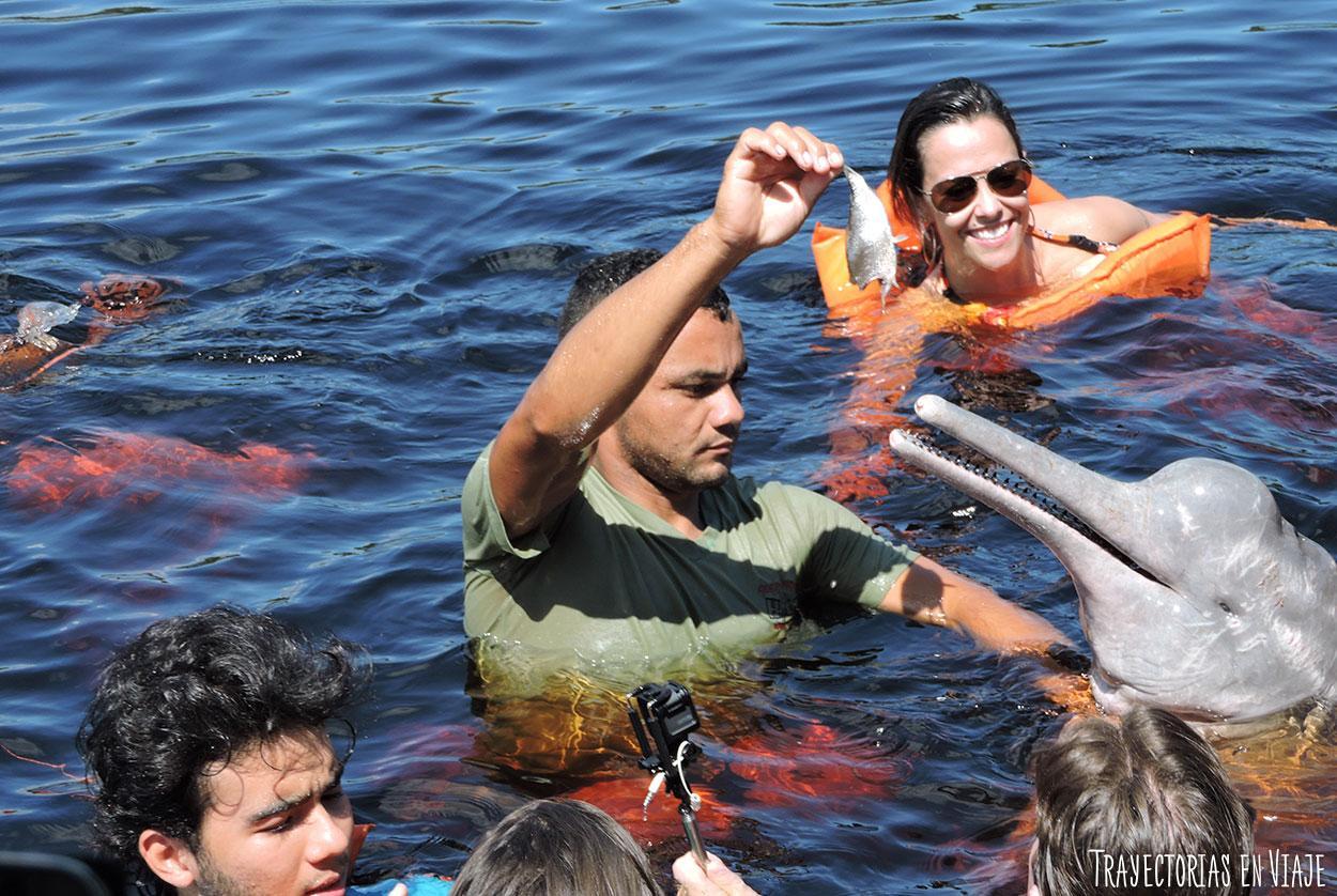 Delfín de río de la Amazonía brasileña.